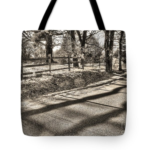 Radiance Tote Bag by Betsy Zimmerli