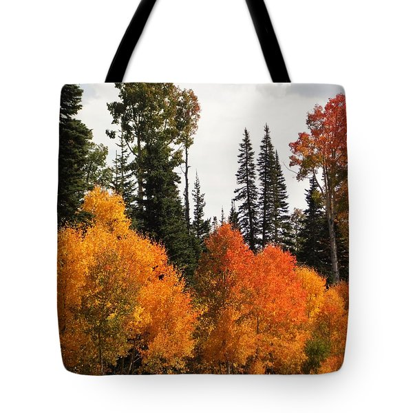Radiant Autumnal Forest Tote Bag