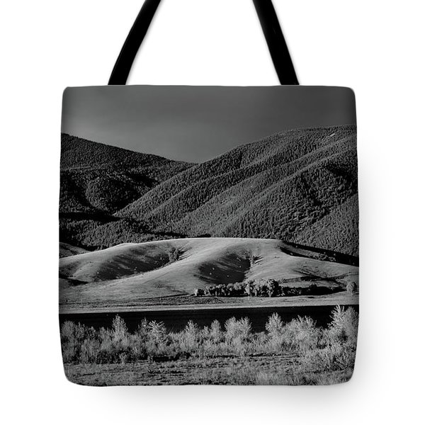 Tote Bag featuring the photograph Radiant by Brian Duram