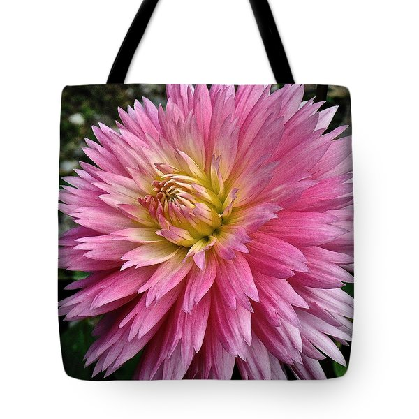 Radiant Dahlia  Tote Bag