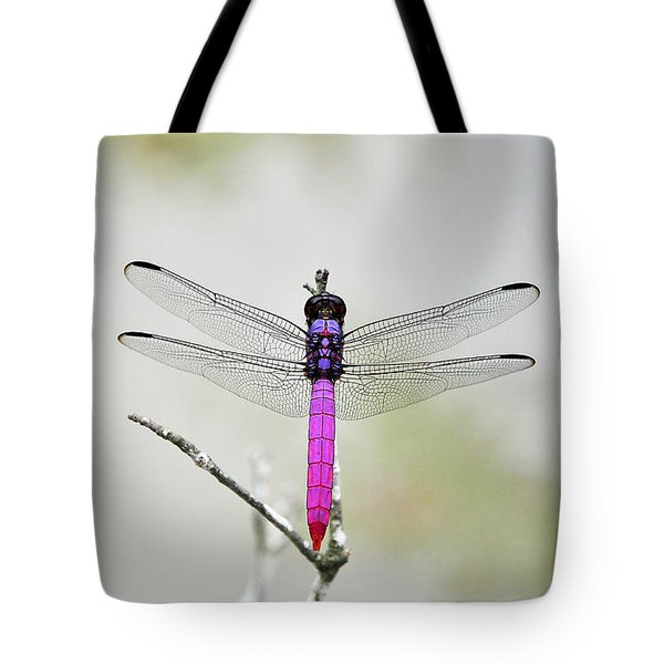 Radiant Roseate Tote Bag by Al Powell Photography USA