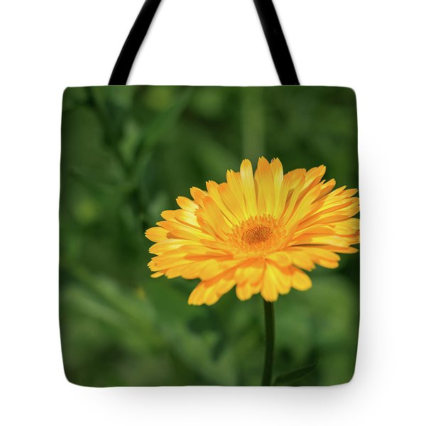Radiant Summer Flower Soaking It Up Tote Bag