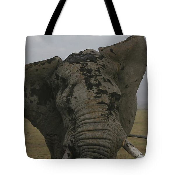 Tote Bag featuring the photograph Raging Bull by Gary Hall
