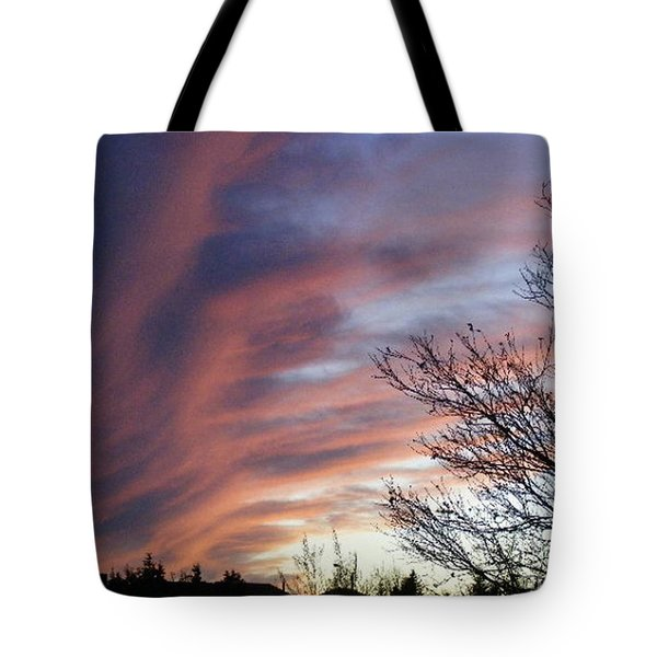 Raging Sky Tote Bag by Barbara Griffin