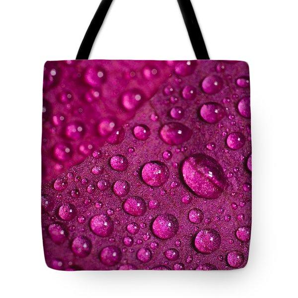 Rain And Bougainvillea Petals Tote Bag by Angelo DeVal