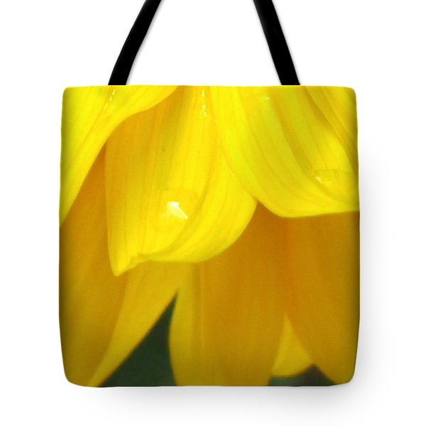 Rain And Sunshine On A Colorado Wildflower Tote Bag