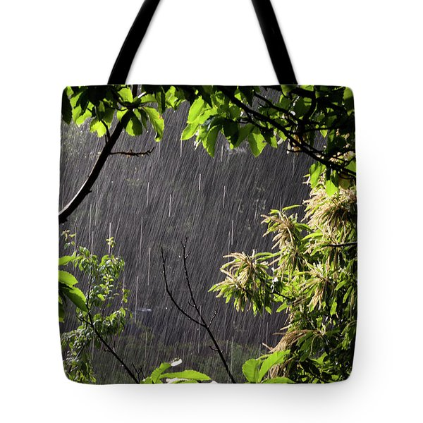 Tote Bag featuring the photograph Rain by Bruno Spagnolo
