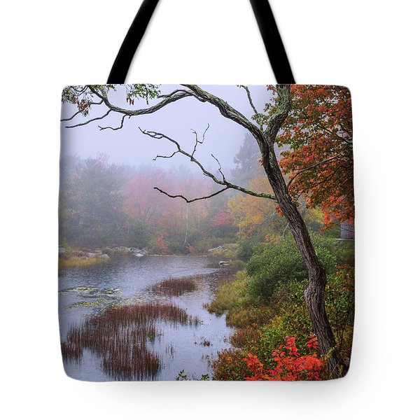 Tote Bag featuring the photograph Rain by Chad Dutson