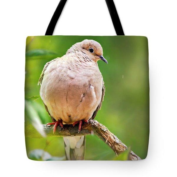 Rain Dove Tote Bag by Christina Rollo