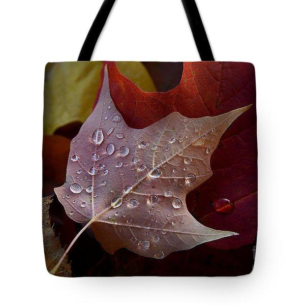 Rain Droplets On Leaf Tote Bag