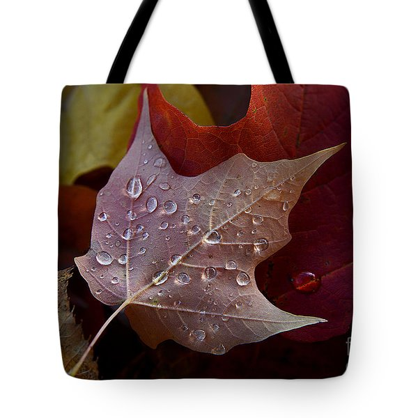 Rain Droplets On Leaf Tote Bag