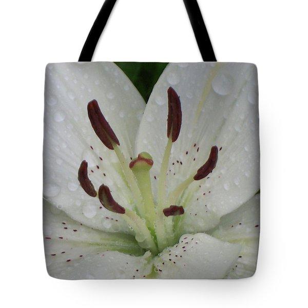 Rain Drops On Lily Tote Bag