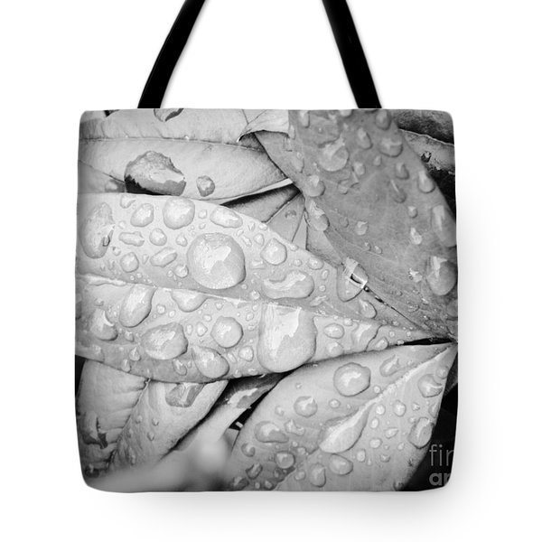 Tote Bag featuring the photograph Rain Drops by Robin Coaker