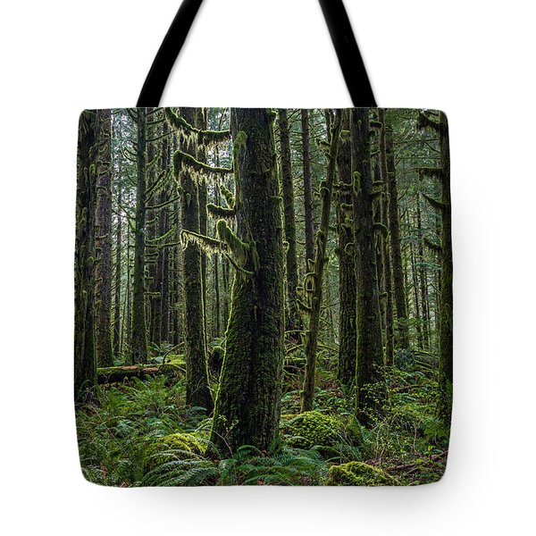 Rain Forest Of Golden Ears Tote Bag