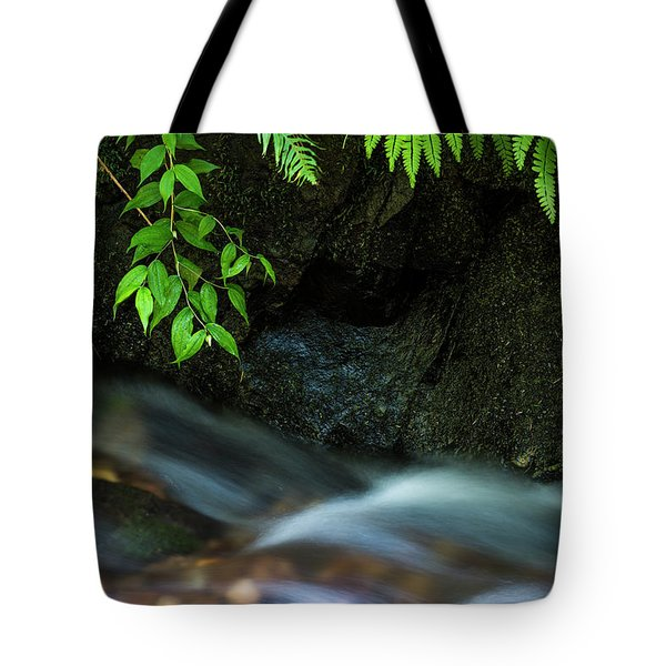Rain Forest Stream Tote Bag