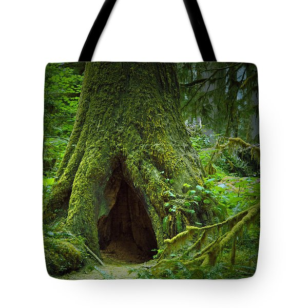 Rain Forest Walk 2 Tote Bag