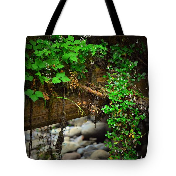 Rain Forest Walk Tote Bag