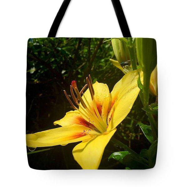 Rain Kissed Tiger Lily Tote Bag