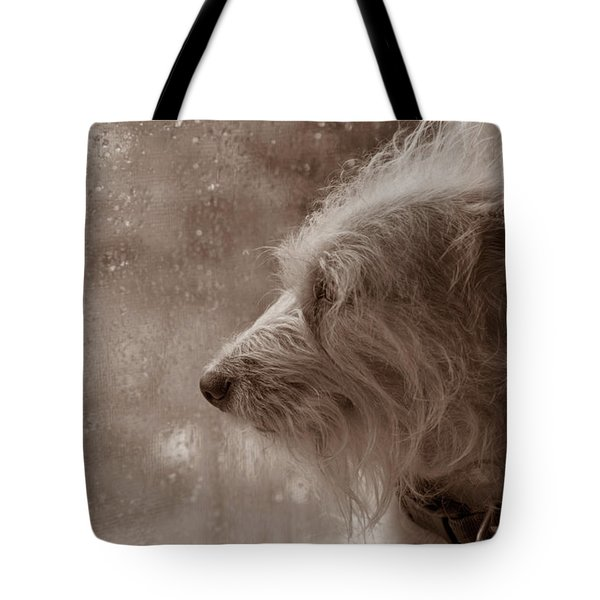 Rain Rain Go Away Tote Bag by Steve Gravano
