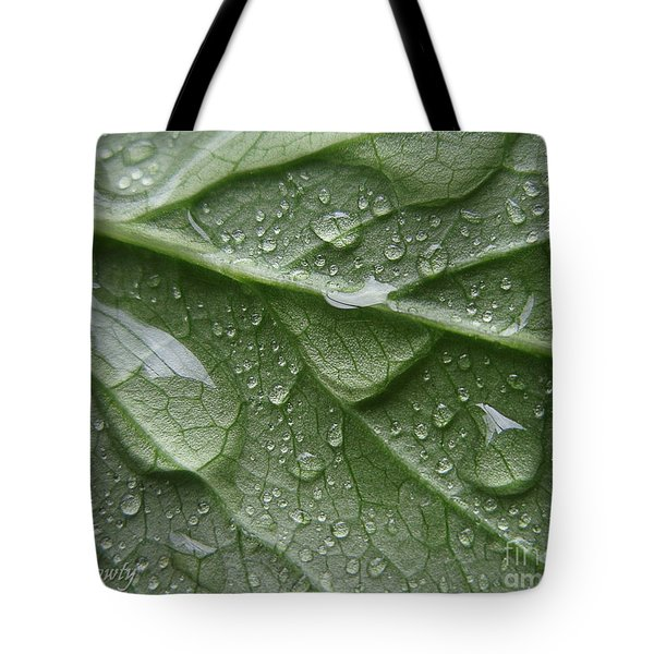 Rain Splashed Snow On The Mountain Tote Bag