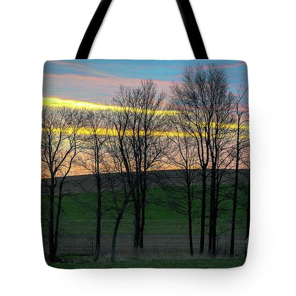 Rainbow Color Tree Horizon Tote Bag
