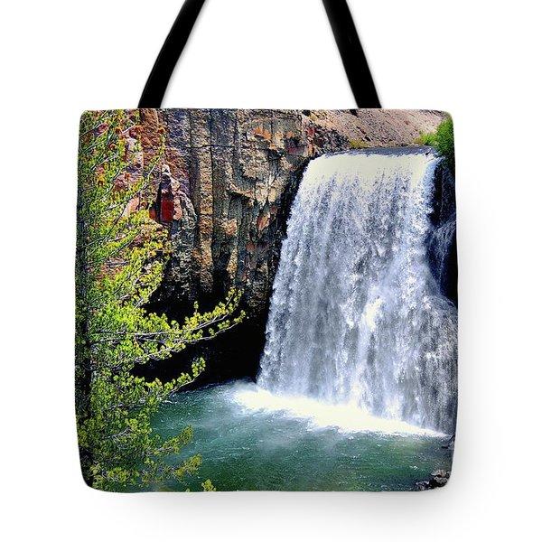 Rainbow Falls 9 Tote Bag