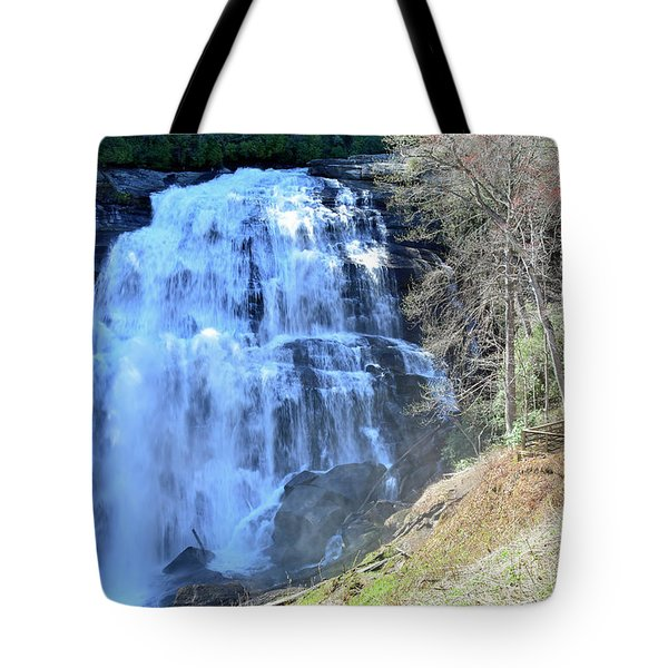 Rainbow Falls In Gorges State Park Nc 02 Tote Bag by Bruce Gourley