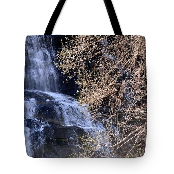Rainbow Falls In Gorges State Park Nc 03 Tote Bag by Bruce Gourley