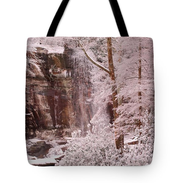 Rainbow Falls Smoky Mountain National Park -- Painted Photo. Tote Bag by Christopher Gaston