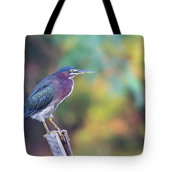 Rainbow Heron Tote Bag