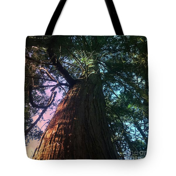 Rainbow Hue Heaven Tote Bag by Kim Prowse