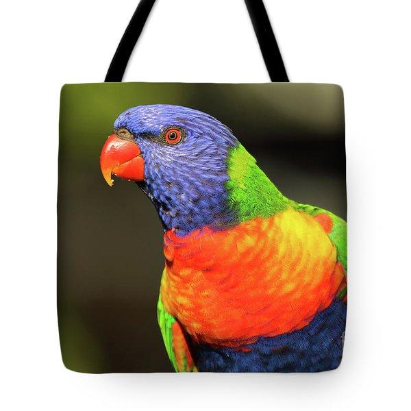 Rainbow Lorikeet Portrait Tote Bag