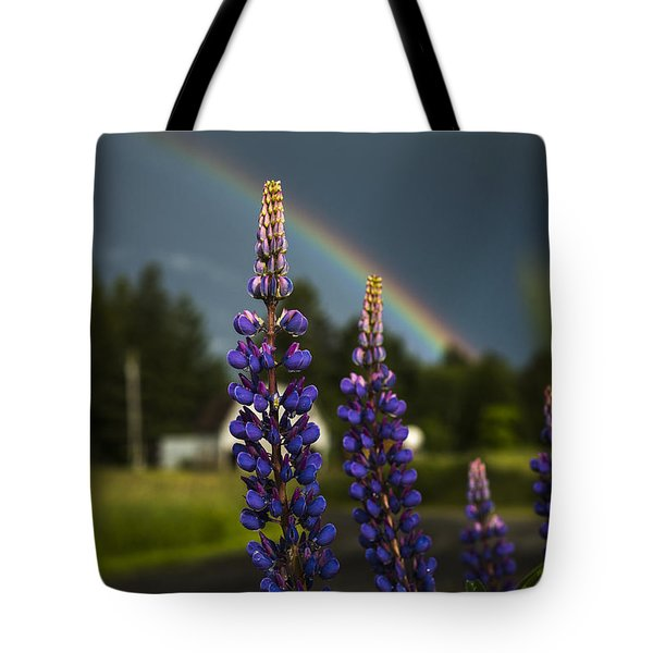 Rainbow Over Lupine  Tote Bag