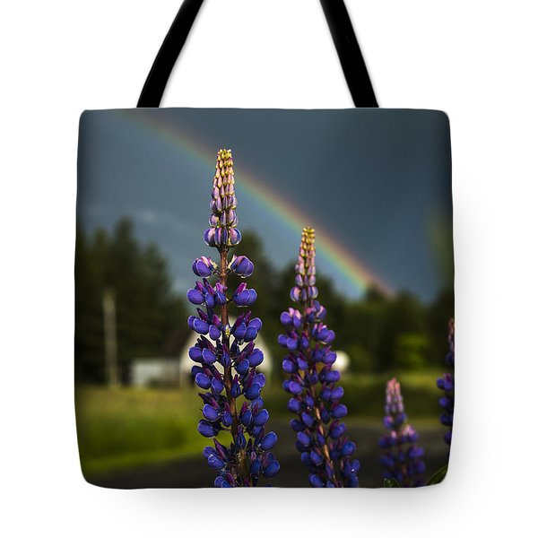 Rainbow Over Lupine  Tote Bag