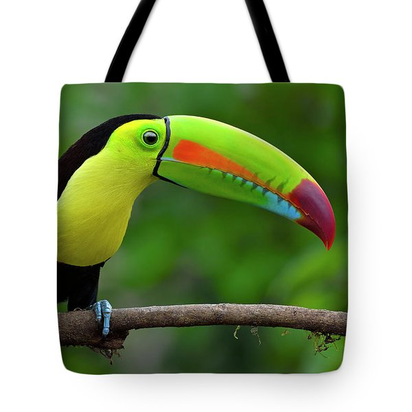 Rainbow Party Tote Bag