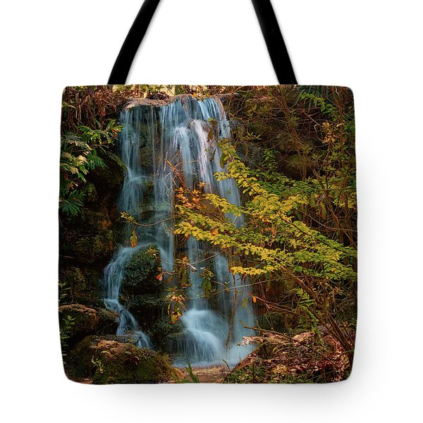 Tote Bag featuring the photograph Rainbow Springs Waterfall by Louis Ferreira