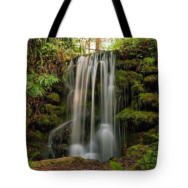 Rainbow Springs Waterfall Tote Bag