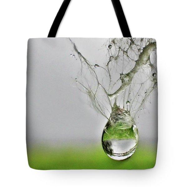 Raindrop On Web Tote Bag by Lorella Schoales