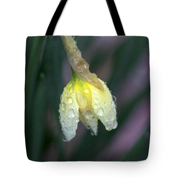 Raindrops Tote Bag by Joseph Skompski