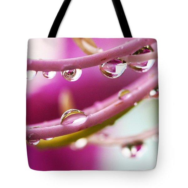 Raindrops Tote Bag by Marilyn Hunt