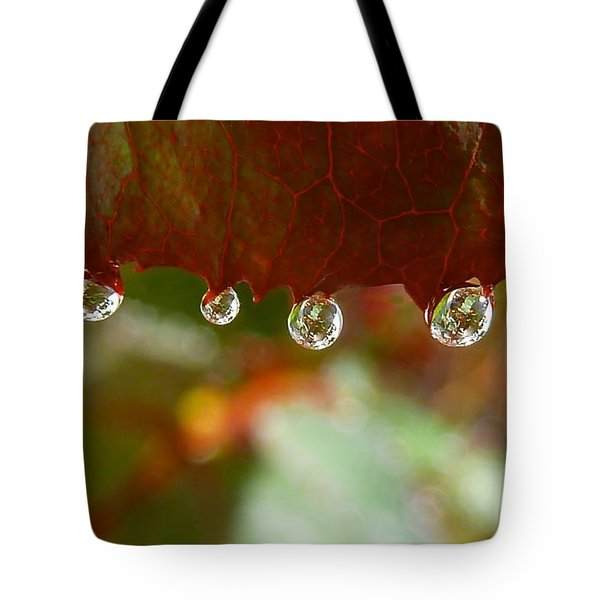 Raindrops On A Red Leaf Tote Bag by Patricia Strand