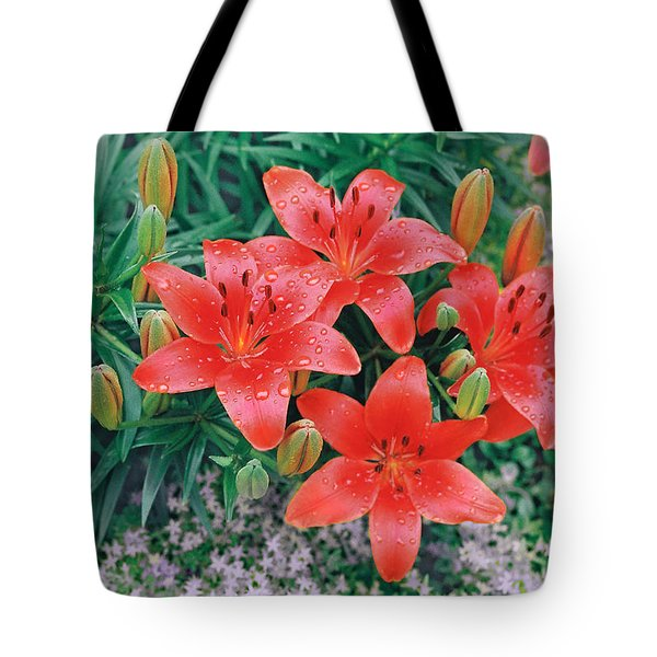Tote Bag featuring the photograph Raindrops On Crimson Pixie Asiatic Lily by Nancy Lee Moran