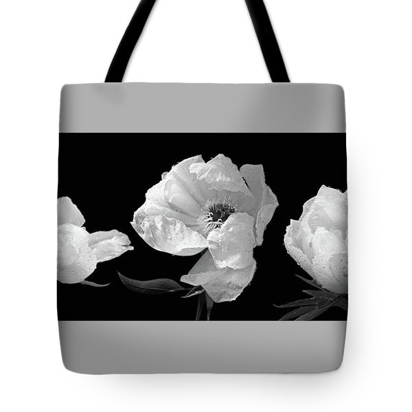 Raindrops On Peonies Black And White Panoramic Tote Bag by Gill Billington