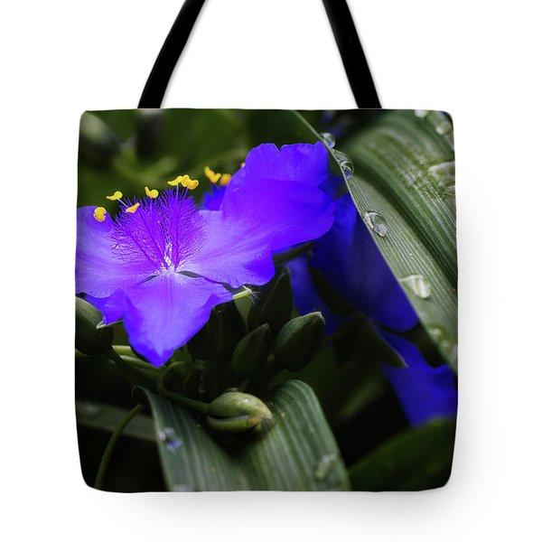 Raindrops On Spiderwort Flowers Tote Bag