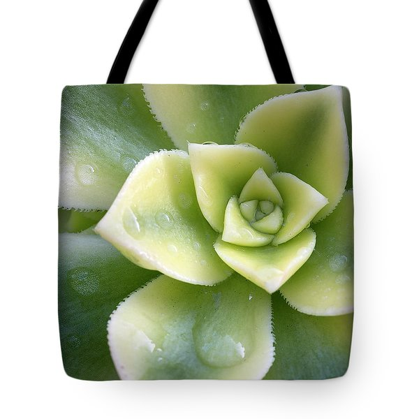 Tote Bag featuring the photograph Raindrops On The Succulent by Elvira Butler
