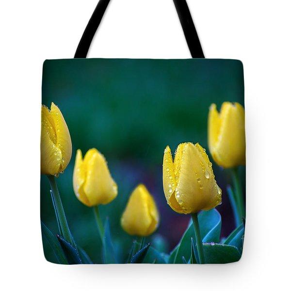 raindrops on Tulips Tote Bag