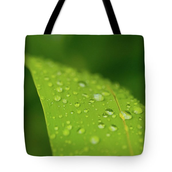 Tote Bag featuring the photograph Rainfall by SR Green