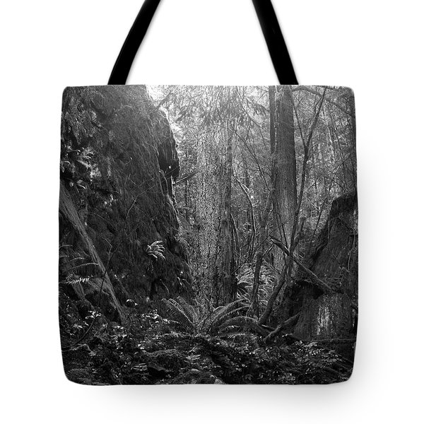 Tote Bag featuring the photograph Rainforest Black And White by Sharon Talson