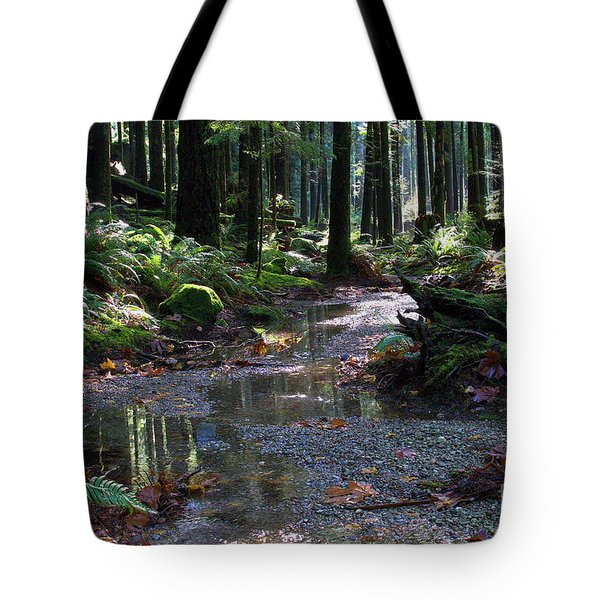 Tote Bag featuring the photograph Rainforest Trail 2 by Sharon Talson