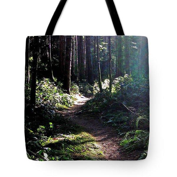 Rainforest Trail Tote Bag by Anne Havard